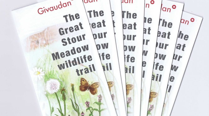 Wildlife trail leaflet