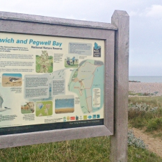 Wildlife Trusts - Sandwich Bay