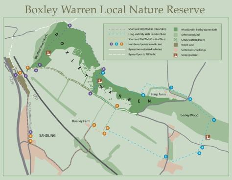 countryside site map - boxley