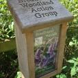 Timber leaflet dispenser